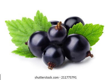 Black currants isolated on white. Shiny, glossy appearance. See image 385662229 for better edition with clipping paths
