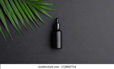 Black dropper bottle mockup and palm leaf on black background. Flat lay, top view. Herbal cosmetic, natural organic beauty product, essential oil packaging design.