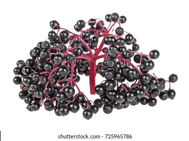 Black elderberry fruit isolated on a white background