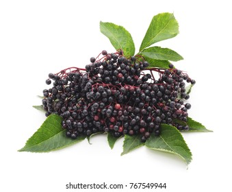 Black elderberry fruit isolated on a white background.