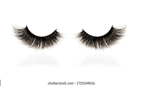 black eyelashes with reflection isolated on a wite background, closeup