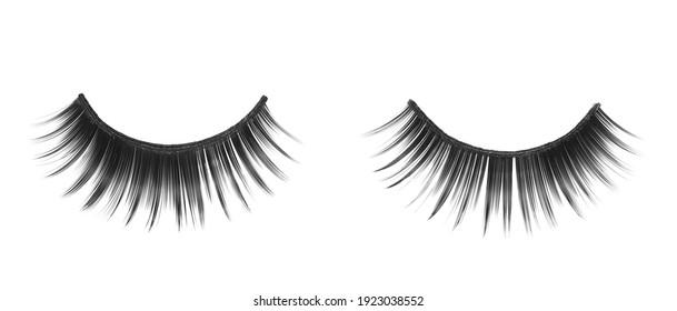Black false eyelashes isolated on white background, clipping path