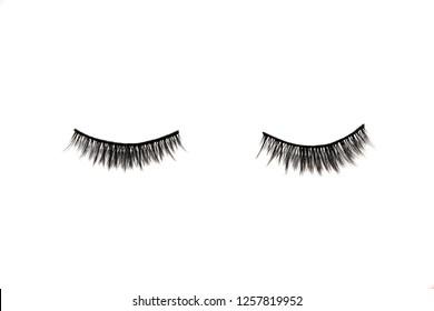 Black False eyelashes. Mascara single decorative on isolated white background.