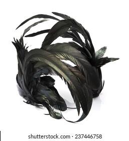Black feather headband on white