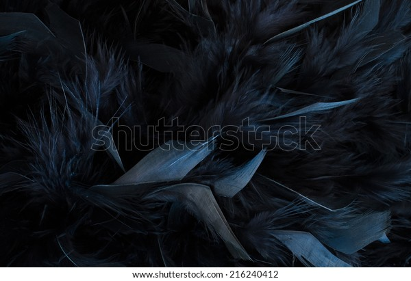black feathers close up of black textured surface