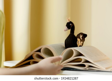 A black felt handmade swan with a  crown  lies is on a boys hand above the open book. The concept of animated fairy tales and stories, reading is a different reality.