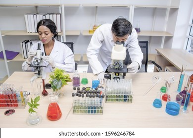 Black female and professor scientist in protective glasses and gloves ,testing tube chemical research in laboratory,test sample antibiotics and future food use in medical development for people