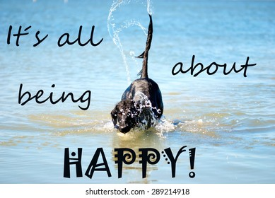 Black Flat Coated Retriever Dog Playing Or Swimming In The Ocean Or The Water Or Sea. English Life Quote It Is All About Being Happy. Dog Has Fun And Enjoy The Water.