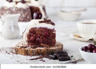 Black forest cake, Schwarzwald pie, dark chocolate and cherry dessert on a white plate. Copy space.