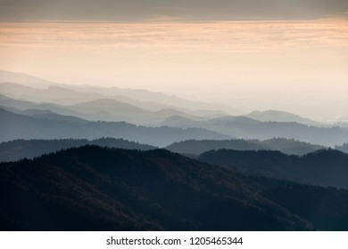 Black Forest mountains