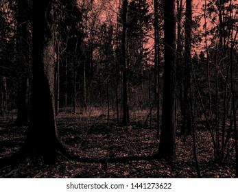 Horror Images, Stock Photos & Vectors | Shutterstock