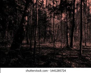 Horror Images, Stock Photos & Vectors   Shutterstock