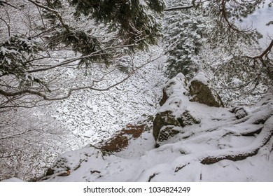 Black Forest in winter, Germany