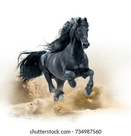 black friesian horse running in desert