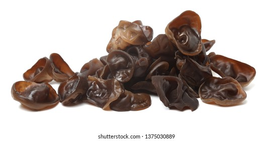 Black fungus on a white background