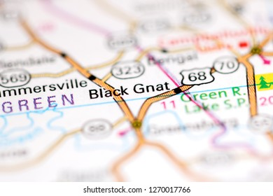 Black Gnat. Ohio. USA on a geography map