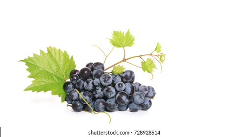 black grapes isolate on white background