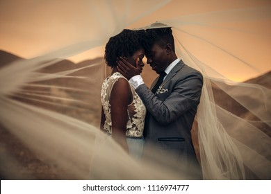 Black happy newlyweds stand under bridal veil and embrace in canyon against beautiful landscape at sunset.