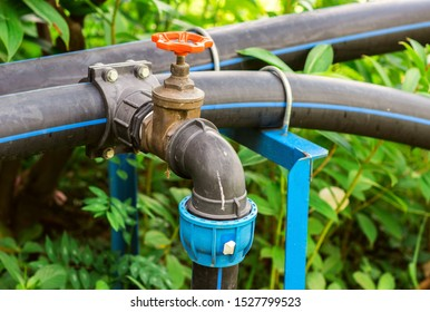 Black HDPE water pipes with valve for the irrigation system in the park