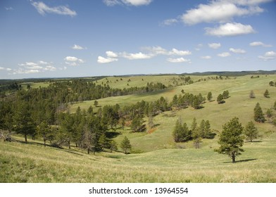 Black Hills - Wind Cave National Park, Custer County, SD