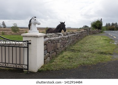 Black Horse with Horse Head statue
