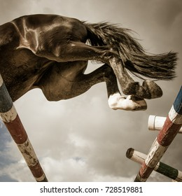 a black horse is jumping over the barrier