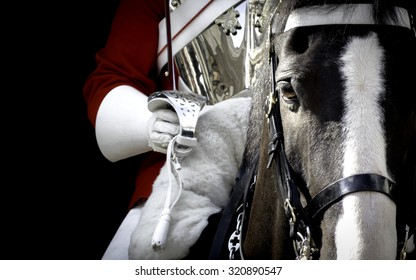 Black horse mounted by a british royal guard in London, England