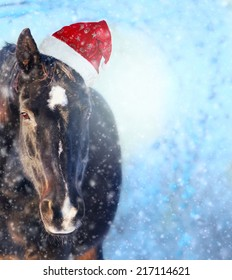 Black horse with Santa hat in show fall, Christmas background
