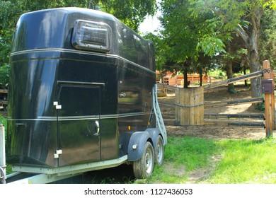 Black horse trailer.