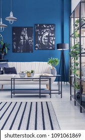 Black industrial racks and a box frame coffee table in a blue designer living room interior with artworks and plants