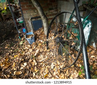 Black iron wagon wheel abandoned in a garden