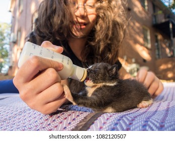 Black and kitten being bottle fed by a girl