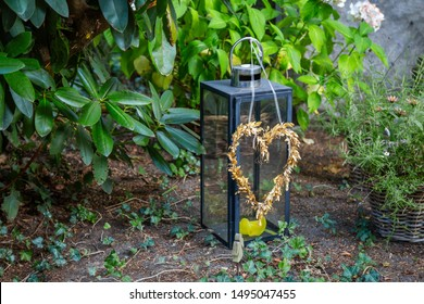 Black lantern with straw heart and green plants