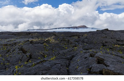 The black lava fields around Puu Oo, with new plants growing on the lava and a helicopter is hovering over Kilaueas most acitve crater, Big Island, Hawaii.
