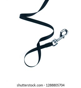 Black leash close up isolated