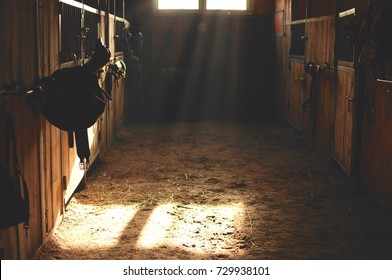 Black leather saddle hangs in an old barn and is light with sunshine