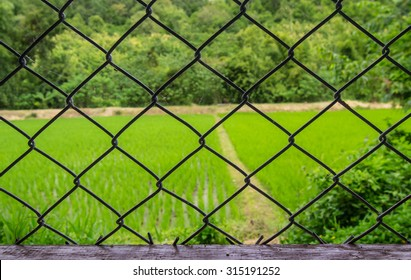 black of Metal wire fence or cage on the field, blurry background.