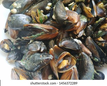 Black mussel open shells in a white plate
