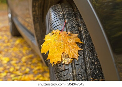 Black new wheel of a car and wet maple yellow autumn leaves on the roadside. Traffic safety on slippery leaves