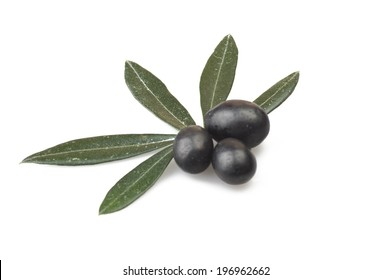 Black olive and leaves on the  white