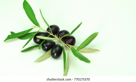 Black Olives white background. Mediterranean olive close up. Healthy Vegetarian food, diet, dieting concept