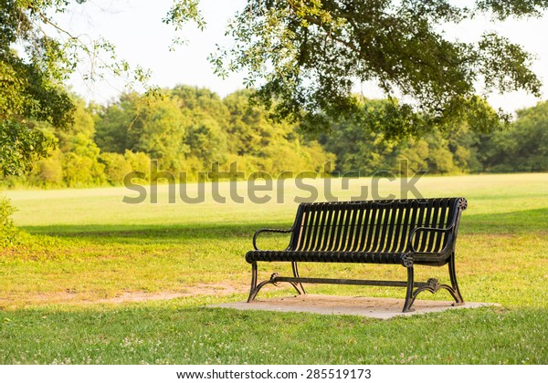 Miraculous Black Park Bench Park During Warm Stock Photo Edit Now Creativecarmelina Interior Chair Design Creativecarmelinacom