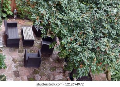 Black patio furniture under a cherry tree