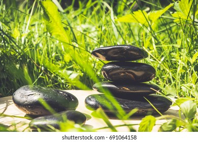 Black pebbles on a background of green grass