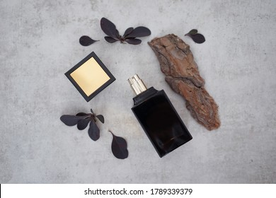 Black perfume bottle with a fragment of wooden bark and burgundy leaves on a gray background. Concept of woody male scent