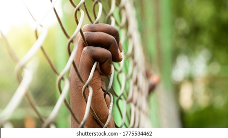 Black Person Hands on Metal Wire Fence with Green Foliage Background. Prisoner's Hand Close Up Shot. Anti Racism Concept.