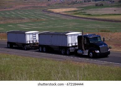 Black Peterbilt pulling double grain trailers. June 20th, 2017 Oregon, USA
