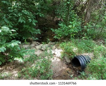 black plastic drain pipe in the woods