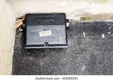 Black plastic rat bait poison box used to control vermin and mice