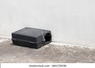 A black plastic rat trap on concrete floor. bait poison box for rat.